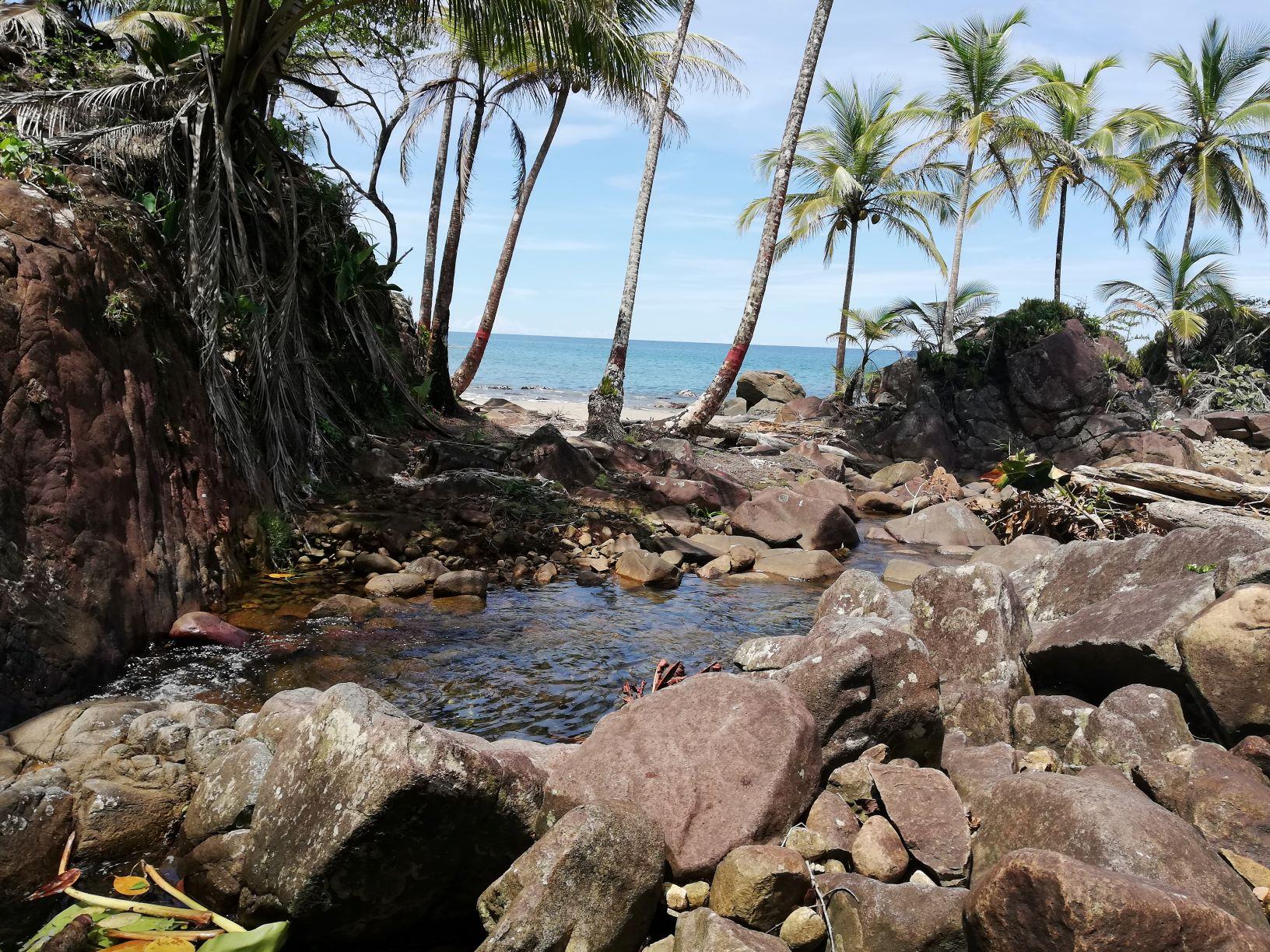 Panama-Caribbean-beach-ocean-front-lots-for-sale (6)