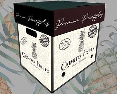 Caimita Fruits Panama box